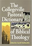 img - for The Collegeville Pastoral Dictionary of Biblical Theology book / textbook / text book