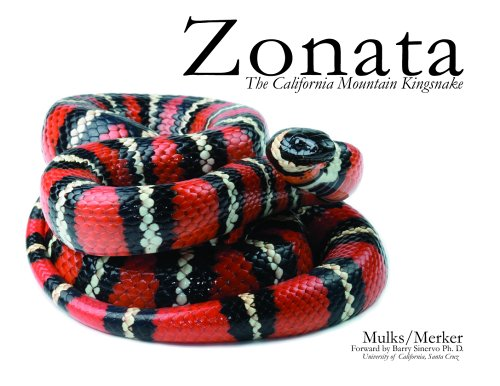 Zonata: The California Mountain Kingsnake: Amazon co uk