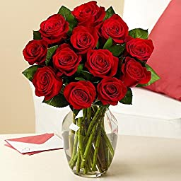 Valentine\'s Day - Rose Elegance Premium Long Stem Red Roses - 12 with Free Vase