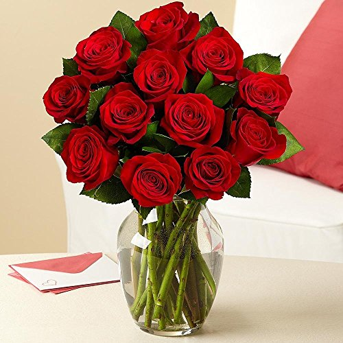 Valentine's Day - Rose Elegance Premium Long Stem Red Roses - 12 with Free Vase by eflowerwholesale