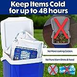 Cooler Shock Reusable Ice Packs (Set of4) - Long