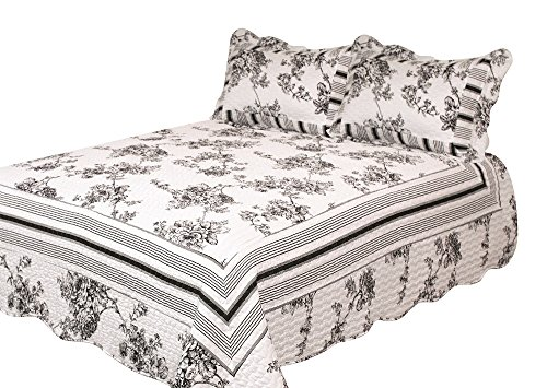 Patch Magic Past and Present 3-Piece Quilt Set Queen, Floral, Black N White ()