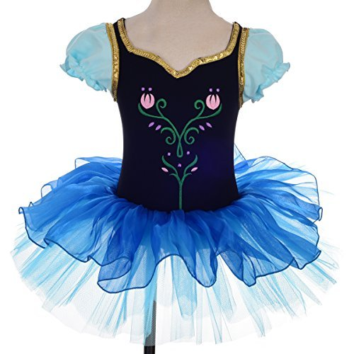 Fairy Ballet Tutu (Dressy Daisy Girls' Princess Anna Tulip Embroidery Ballet Tutus Dancewear Fairy Costume Size 2-3T Multicoloured)