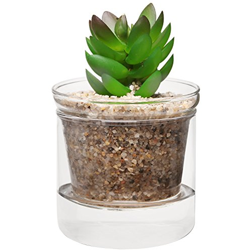MyGift Decorative Succulent Freestanding Display