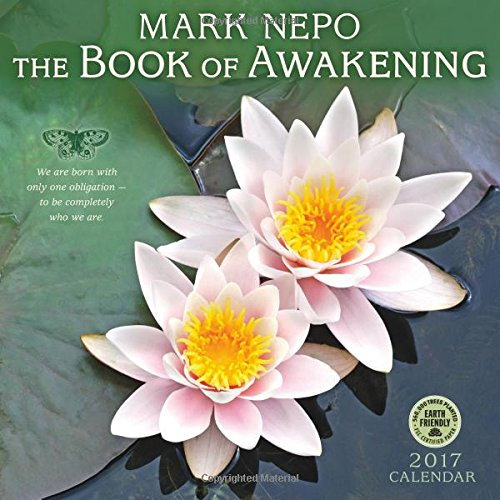 Book Awakening 2017 Wall Calendar