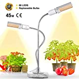 Lights For Growings - Best Reviews Guide