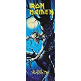 "Iron Maiden Fear Of The Dark DOOR Tapestry Cloth Poster Flag Wall Banner 21"" x 58"""