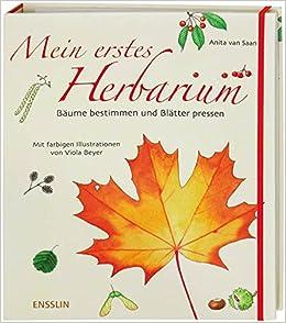 Herbarium Blätter mein erstes herbarium bäume bestimmen und blätter pressen