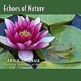 V5 Frog Chorus  Echoes Of Natu