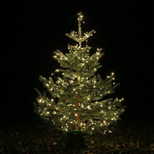 Weihnachtsbeleuchtung Außen Für Große Bäume.Led Lichterkette Groß Ledlk600 60 Meter 600 Leds Für Weihnachtsbaum Weihnachts Baum
