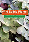 Wild Edible Plants: The Ultimate Guide to Identifying and Harvesting Wild Food!