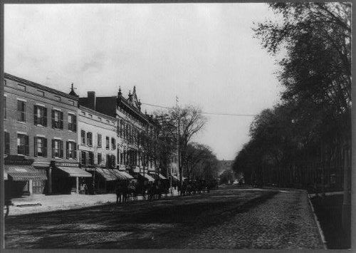 HistoricalFindings Photo: Street scene,commercial,buildings,horse drawn carts,wagons,Ottawa,Kansas,KS,1890
