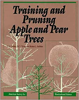 training-and-pruning-apple-and-pear-trees