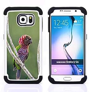 For Samsung Galaxy S6 G9200 - parrot tropical jungle bird nature branch Dual Layer caso de Shell HUELGA Impacto pata de cabra con im????genes gr????ficas Steam - Funny Shop -