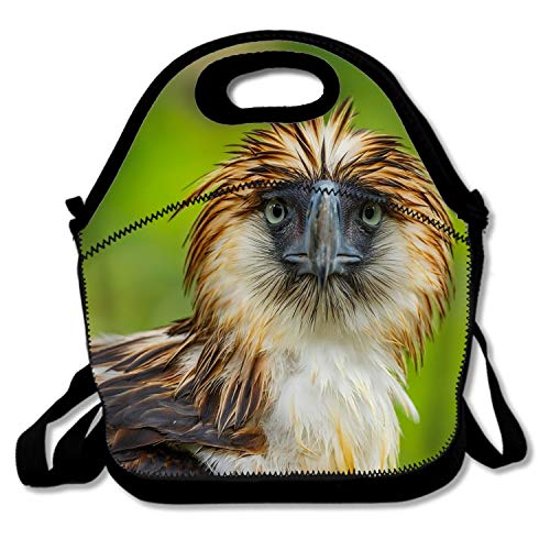 Classic Animal Philippine Eagle Birds Beak Stare Durable Picnic Bag - Easy to Carry to School, Office, Picnic ()