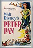 Trends International Peter Pan-One Sheet Wall Poster, 25.8'' x 37.8'' x 1'', Multicolor