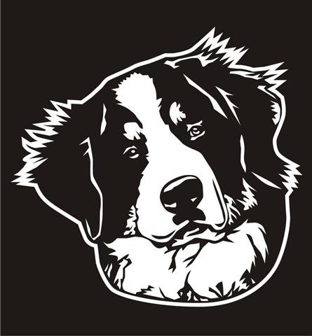 - Bernese Mountain Dog Head v2 Decal Sticker - Peel and Stick Sticker Graphic - - Auto, Wall, Laptop, Cell, Truck Sticker for Windows, Cars, Trucks