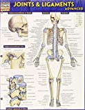 img - for Joints & Ligaments Advanced (Quick Study Academic) book / textbook / text book