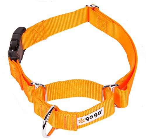 Pictures of GoGo Pet Products GoGo 3/8-Inch 15113 Orange 5