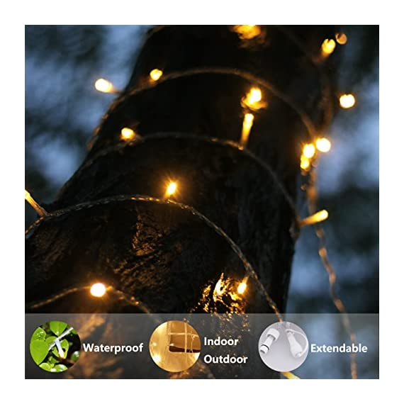 LED String Lights, by myCozyLite, Plug in String Lights, 49Ft 100 LED Warm White Lights with Timer, Waterproof, Perfect for Indoor and Outdoor use with 30V Low Voltage Transformer, Extendable - String Lights - Premium quality hanging lights with timer and plug, 15m long clear wire(10m String Lights, 5m Lead Wire), 30V low voltage transformer with 7.2W Rated Power. 8 Functions plus timer and memory Timer & Memory - Auto Timer Allows a Simple Press and Go, 6 Hours Running and 18 Hours Off Following by another 6 Hours Running, 24 Hours Cycling. Built-in Memory Chip will save the function till the next time light up. Extension - Connectable small string lights with male and female safe plug to fit different size Christmas trees and garlands, or to decorate patio, porch, backyard - patio, outdoor-lights, outdoor-decor - 5155W42aIgL. SS570  -
