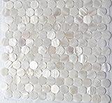 AFSJ Genuine White Round Penny Mother of Pearl Mosaic Tile For Bathroom/Spa/Kitchen Backsplash (6 Sheets)