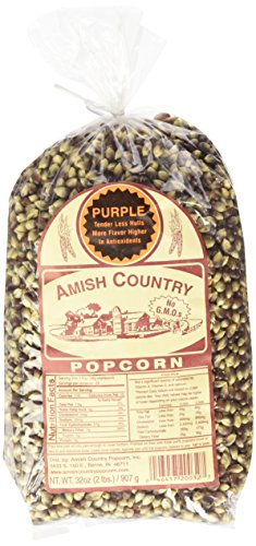amish purple popcorn - 2