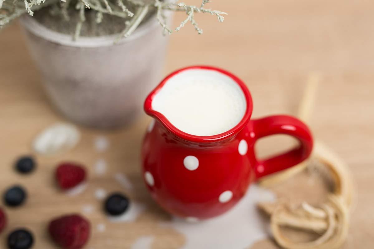 City to Cottage Pot /à lait Sauci/ère rouge /à pois blancs en c/éramique fait et peint /à la main