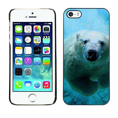 SuperStar // Refroidir image Étui rigide PC Housse de protection Hard Case Protective Cover for iPhone 5 / 5S / Polar Bear mignon piscine /
