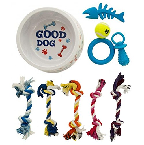 Mini Dog Toy Rings - Printed Dog Bowl & 9 Assorted Chew Toys for Small Dogs, Durable Rope, Mini Tennis Ball, Chew Ring & Pacifier Toys
