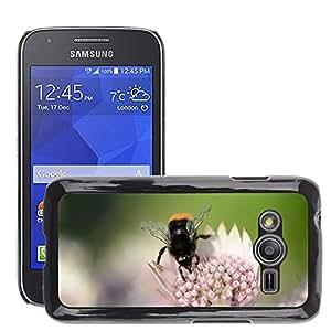 Cas Coq Case Cover // M00147194 Flores Prado del verano Blanco Rosa // Samsung Galaxy Ace4 / Galaxy Ace 4 LTE / SM-G313F