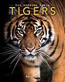 Tigers: Amazing Pictures & Fun Facts on Animals in Nature