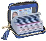 Easyoulife Genuine Leather Credit Card Holder Wallet Zipper Wallet With Tassel (Blue)