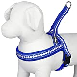 "Blueberry Pet Soft & Comfy 3M Reflective Jacquard Padded Dog Harness, Chest Girth 19"" - 23.5"", Palace Blue, XS/S, Adjustable Harnesses for Dogs"