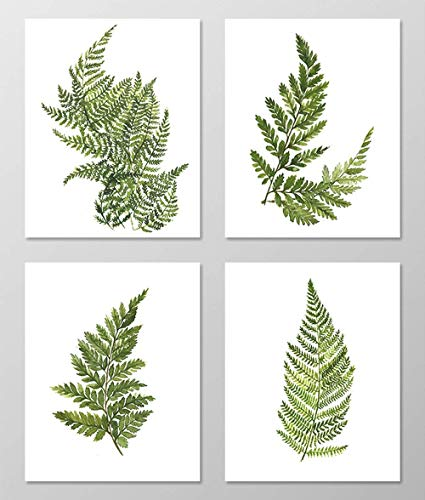 Fern art #A074 - Set of 4 art prints (8x10). Fern wall art.Fern picture.Botanical art.Botanical prints wall art. Nature art botanical.Painting.Nature art.Nature wall art.Green wall art.Green decor. ()