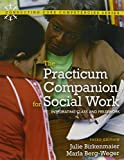 Practicum Companion for Social Work : Integrating Class and Fieldwork, Birkenmaier and Birkenmaier, Julie M., 0205022154