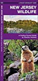 New Jersey Wildlife: A Folding Pocket Guide to Familiar Species (A Pocket Naturalist Guide)
