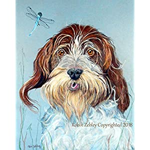 Wire Haired Pointing Griffon Art giclee PRINT, Signed by Artist 1