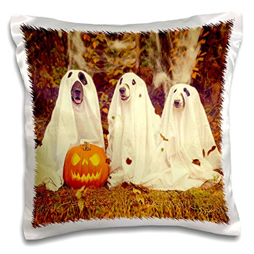 3dRose Sandy Mertens Halloween Designs - Dogs in Ghost Costumes with Jack o Lantern Image, 3drsmm - 16x16 inch Pillow Case (pc_290224_1) ()