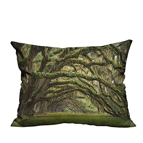 (YouXianHome Decorative Throw Pillow Case Oaks Avenue Charleston SC Plantation Live Oak Trees Forest Landscape in ACE Basin Ideal Decoration(Double-Sided Printing) 20x35.5)