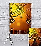 Allenjoy 5x7ft Thin Vinyl Photography Background Halloween Night Party Pumpkin Lantern Black Cat Spider Web Bat Children Kids Celebration Photography Backdrop