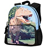 Best EcoCity Backpack For Hikings - Bistar Galaxy Children Backpack for Boys and Girls Review