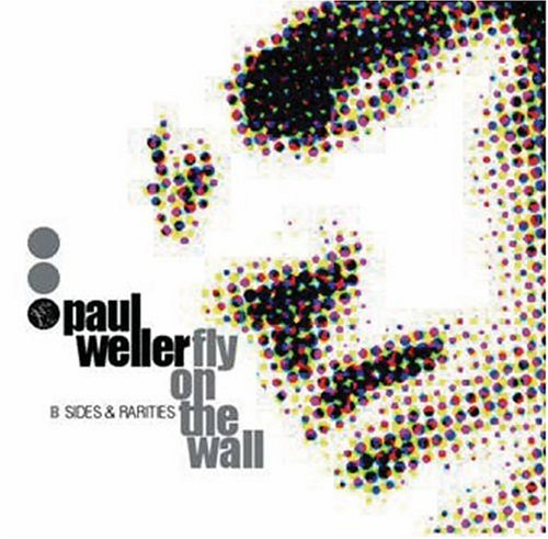 Fly on the Wall: B-Sides & Rarities 1991-2000 by Weller, Paul