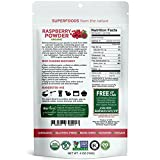 Biofinest Raspberry Juice Powder - 100% Pure Freeze-Dried Antioxidants Superfood - USDA Organic Vegan Raw Non-GMO - Boost Digestion Weight Loss - For Smoothie Beverage Blend (4 oz Resealable Bag)