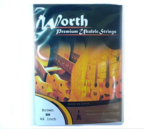 Worth Premium Package Concert/Soprano 23''/21'' Ukulele String Brown ()