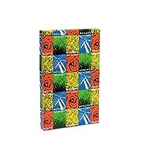 Mohawk - Copier Gloss Paper, 94 Brightness, 32lb, 17 x 11, Pure White, 500 Shts/Rm 36-202 (DMi RM by Mohawk