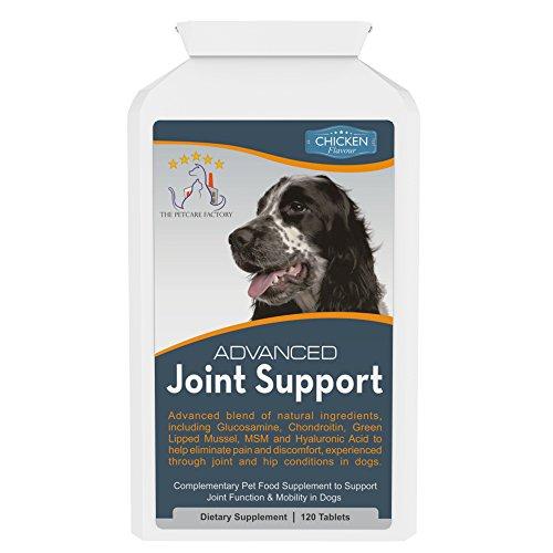 Hochentwickeltes Ergänzungsmittel zur Gelenkunterstützung bei Hunden - Huhngeschmack - 120 Tabletten - Natürliche Inhaltsstoffe mit menschlicher Qualitätsstufe - Enthält Glucosamin, Chondroitin, Grünlippmuschel, MSM, Curcumin & Hyaluronsäure - Hergestellt in Großbritannien