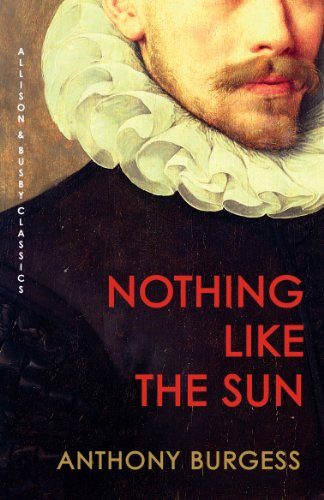 Book cover for Nothing Like the Sun