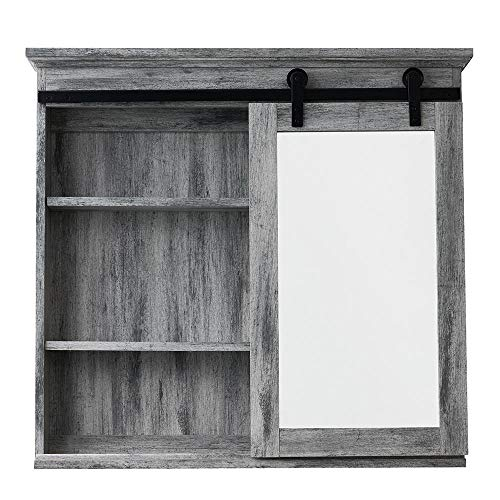 Glacier Bay 31 in. x 29 in. Barn Door Medicine -