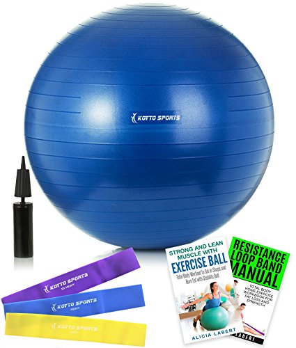 Exercise Ball – 65 cm Fitness Ball - with Hand Pump, Exercise E-Book and Bonus Resistance Loop Bands for Yoga, Pilates and Core Training