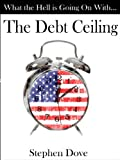img - for What the Hell Is Going on with the Debt Ceiling book / textbook / text book